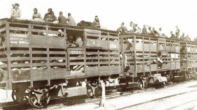Turkish train